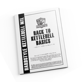 EBOOK BacktoBasicsMockup