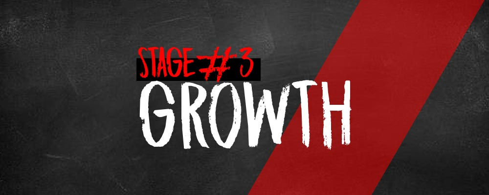 Online Marketing Plan Stage #3: Growth