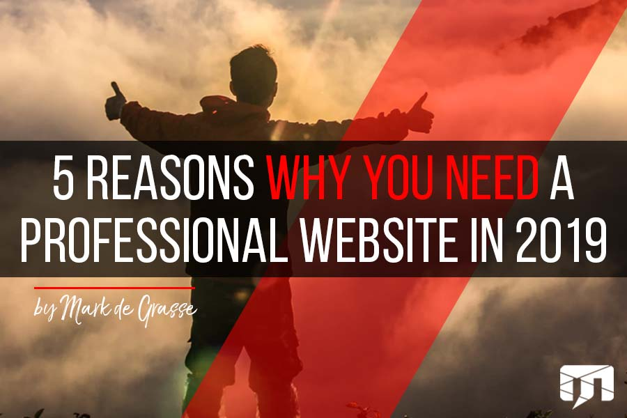 5 Reasons Why You Need a Professional Website in 2019